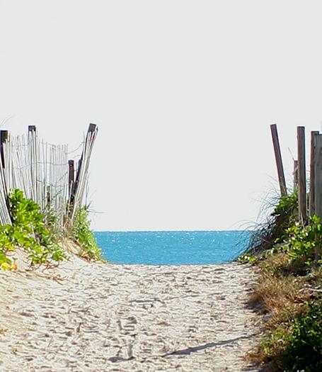 Foto für Travel_Strandweg_Miami_4159_455x525